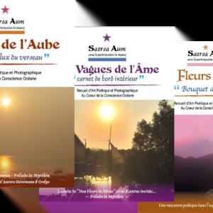 Image des trois PDF